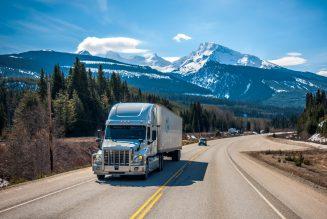 Kokaina warta £30 milionów w ciężarówce z mrożonym mięsem